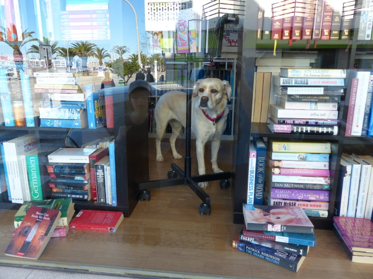 """""""Now if I can only find that first edition of Lassie Come Home."""""""