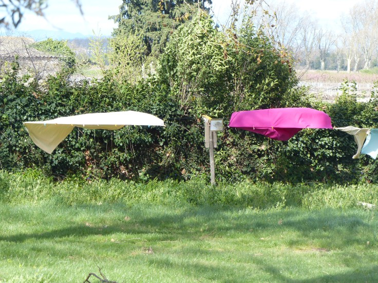 The wind gave the washing a lashing but I bet it dried in a twinkling!