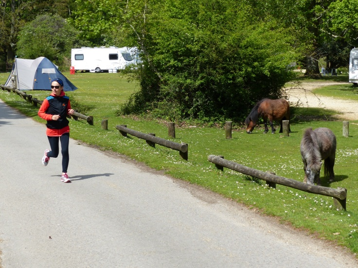 A run and the ponies...what a great combo!