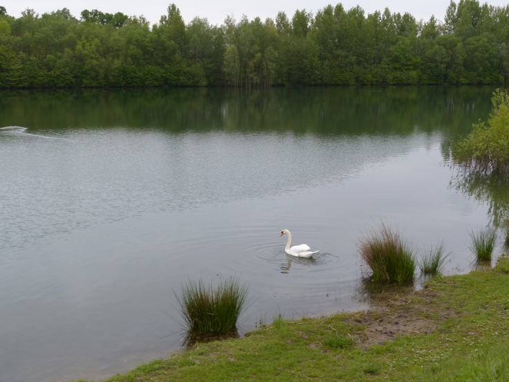 Wal looking placid and serene...for now!