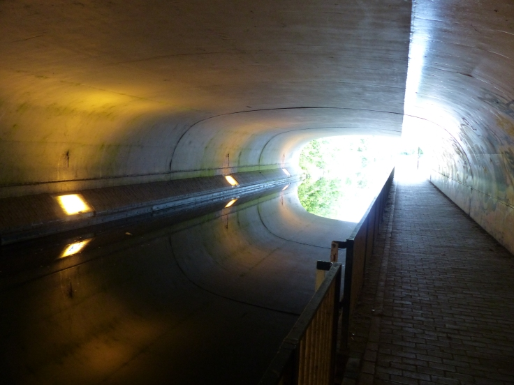 The reflection made this look alike an empty tunnel with top and bottom!
