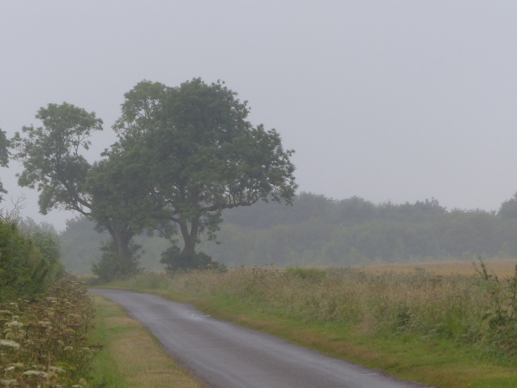 The countryside's elegant grey frock