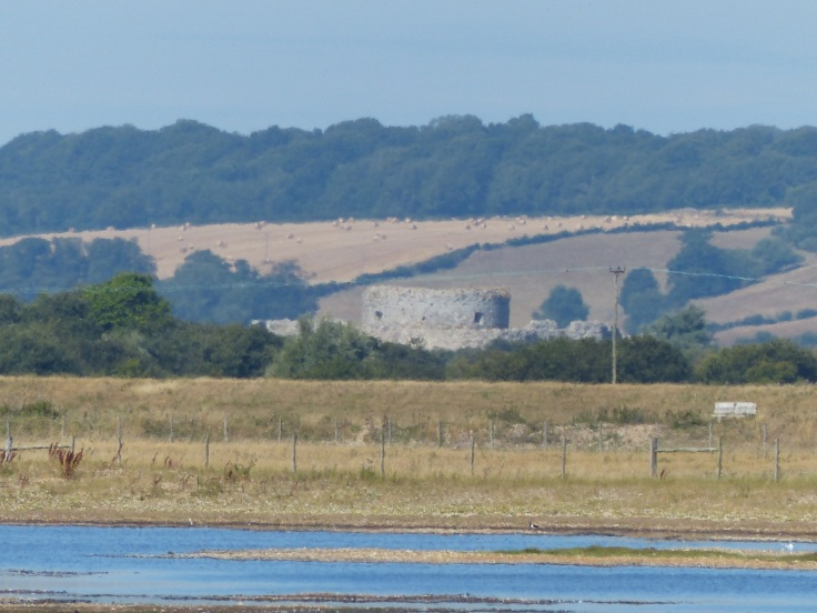 Camber Castle in the distance