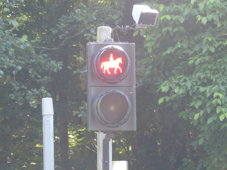 You know you're in the country when you have a crossing for horse riders!