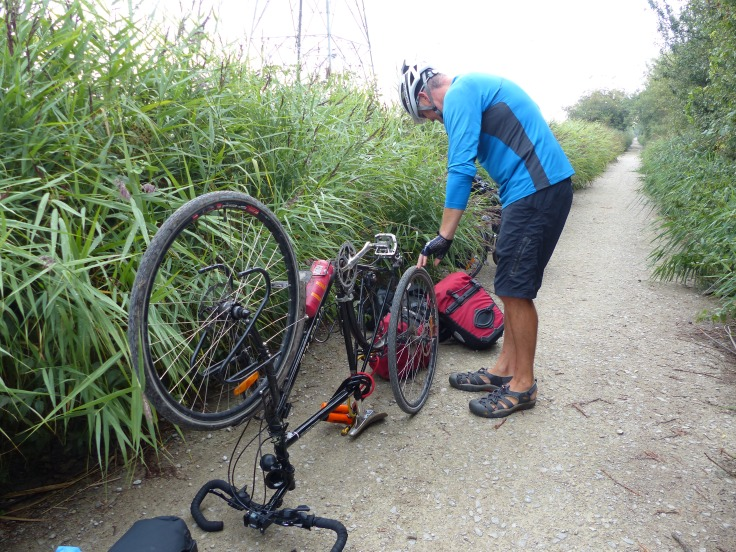 Puncture number 5! The big fella was not happy!