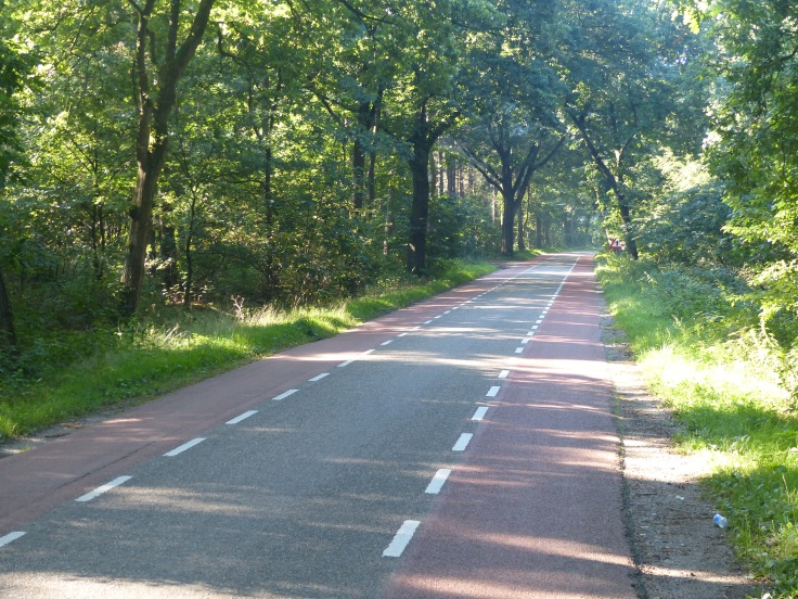 Peaceful roads. This is an example of the roads that have two lanes for bikes and a single lane for cars