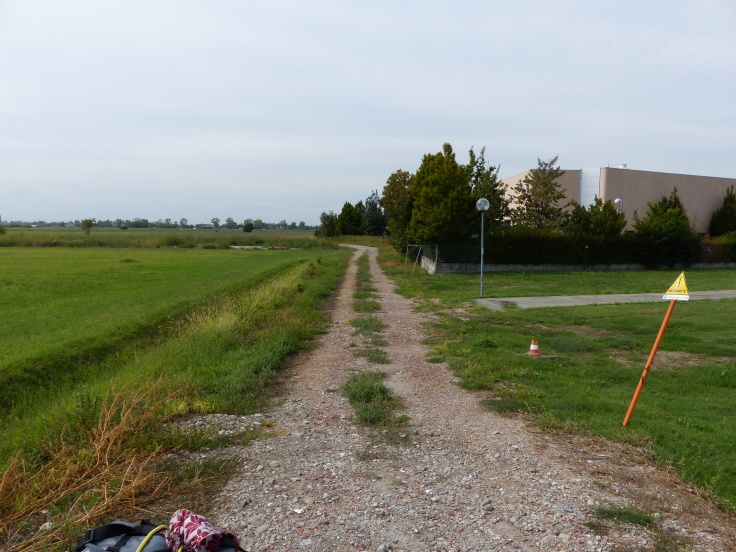 The path to the paddock!