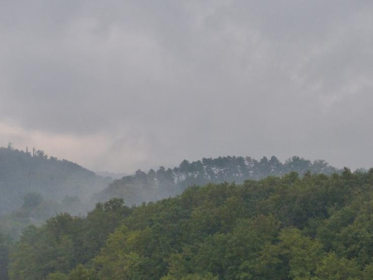 Thar's rain in them thar clouds!