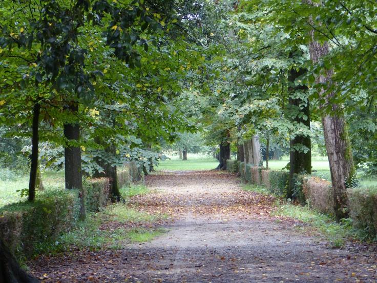 A lovely park