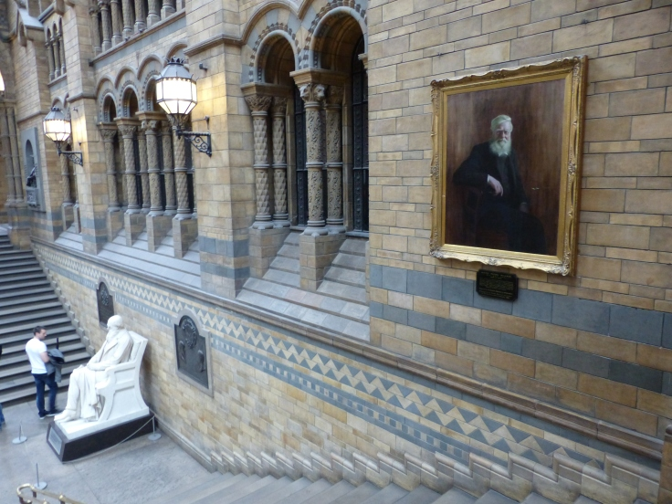 But thanks to Bill Bailey, at least there's Wallace's portrait, up the stairs. Not as prominent as Darwin, but at least it's there