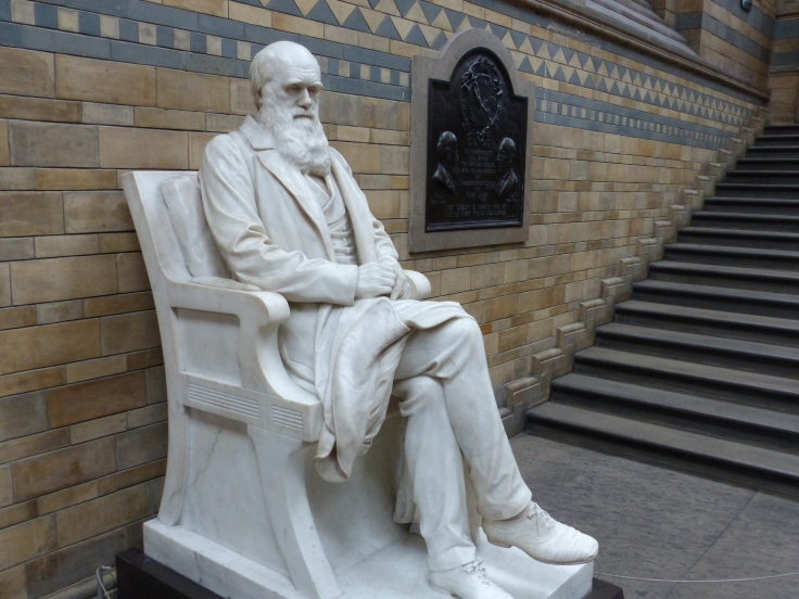 Darwin front and centre as you arrive at the Natural History Museum