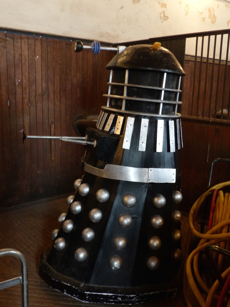 An unexpected resident in the stables. I guess they do time travel!