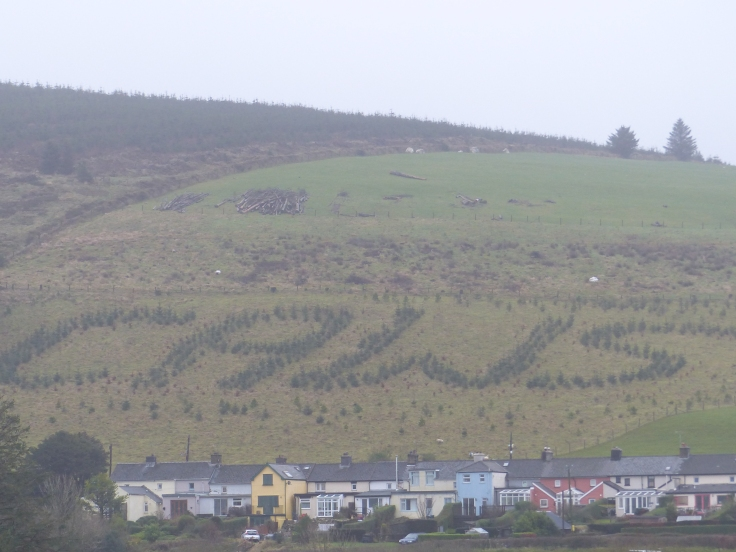 "I think the trees on this hill were just waiting to be photographed, because the word translates as ""CHEESE""!"