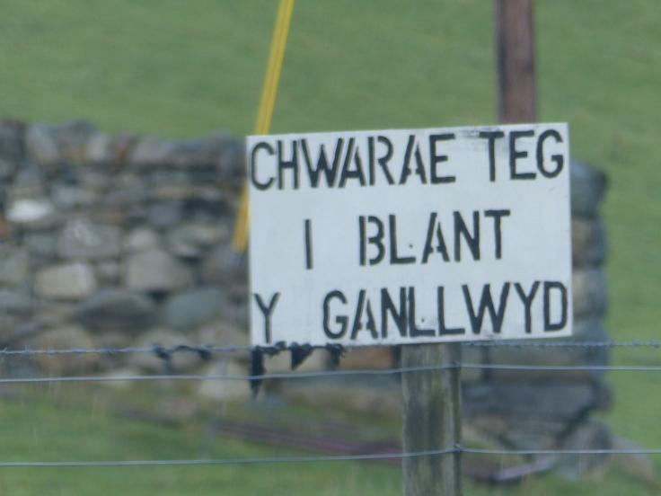 """Playing field for children of Ganllwyd"""