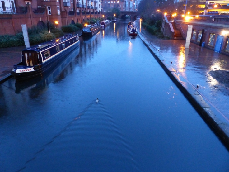 Nice weather for ducks...well one at least who was taking a sedate paddle along the canal.